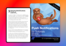 Push Notifications by Tutorials | raywenderlich.com